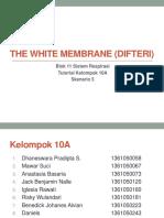 ppt_Blok_11_Respiratory_-_Penyakit_Difte.pptx
