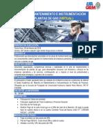 MAESTR+ìA MANTENIMIENTO E INSTRUMENTACI+ôN EN PLANTAS DE GAS - VIRTUAL