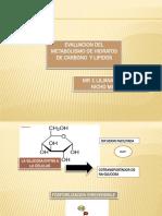 7.- Metabolismo de Hidratos de Carbono y Lipidos