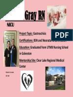 ism mentor poster semester 2