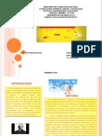 Presen.gantt y Metodo Pret Cpm