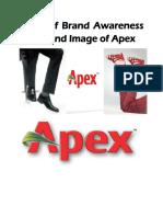 Apex-Assignment-Final-Copy.docx