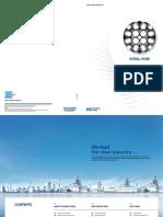 Hyundai Steel.pdf