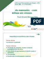 Curso CFO 12-12-12 Paulo