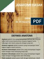 1. Anatomi Dasar
