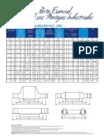 Bridas300.pdf