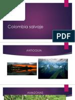 Colombia Salvaje
