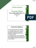 Gestão Ambiental - uma questão estratégica