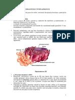 Organite Citoplasmatice