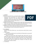 Laporan Pendahuluan Dermatitis