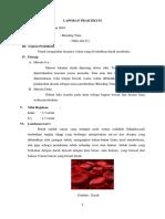 laporan bleeding time.docx