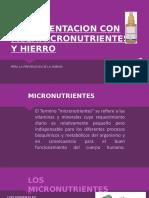 Suplementacion Con Multimicronutrientes y Hierro