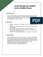 petrologia informe