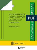 Estudio sobre riesgos laborales emergentes en el sector de la construcción-Gobierno de España-DT 81-1-13 riesgos emergentes meta.pdf