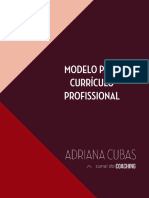 Modelo Curriculo Profissional