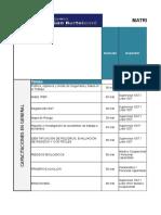 Matriz de Capacitaciones SST - INSANOR