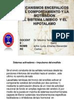 sistemalimbicoyelhipotalamo-131115131824-phpapp01