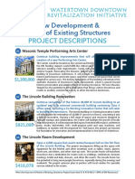 Downtown Revitalization Initiative Project Descriptions