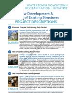 Downtown Revitalization Initiative Project Descriptions