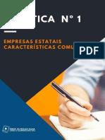 Empresas Estatais – Características Comuns (2)