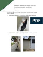 INSTALACION DE CAMARAS EN LA UNIVERSIDAD ALAS PERUNA FILIAL PIURA.docx