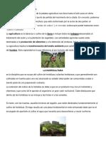 DEFINICIÓN DE AGRICULTURA