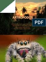 ATLAS ARTROPODOS.pptx