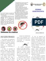 211409625-TRIPTICO-CHIKUNGUNYA.pdf