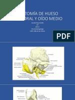 Anatomía de Hueso Temporal y Conducto Auditivo Externo [Autoguardado]