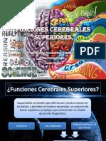 Funciones Cerebrales Superiores (1)
