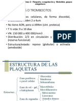 02. HEMATOFISIOLOGIA CLASE 2 HEMOSTASIA AEMH.pdf