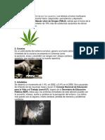 10 Tipos de Drogas