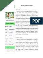 Pinang Tree.docx