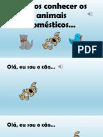 Animais Dosmesticos-prof Susana Ultimo