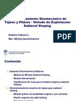 1. Presentacion Dimensionamiento Sls - Roberto c (2)