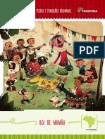 Pe-de-Cultura-1-Boi-Mamao.pdf