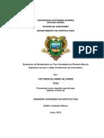T19376 ALVAREZ ALVAREZ, VICTORIA  TESIS.pdf