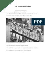 Datos y Hechos Interesantes Sobre La Natacion.