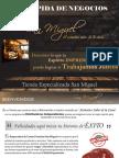 GUIA+RAPIDA+DE+NEGOCIOS+PDF