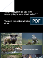 Lesson 4 - What Are We Learning Today About Ecosystems
