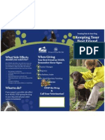 NSAID Brochure for Dogs