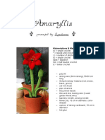 Amaryllis English