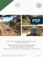 Programa de Sustentabilidad de Los Recursos Naturales Coussa_int