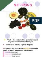 Fruit Ttttt