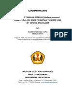 Laporan Magang-Triasfitria Valentira Yudhia-150510130033