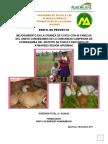 Proyecto crianza de cuyes AYMARAES REGIÓN APURÍMAC.pdf