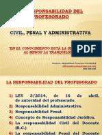 Responsabilidad Docente Civil y Penal.pdf