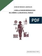 Los Riesgos Para La Función Reproductura Del Hombre y La Mujer en El Trabajo