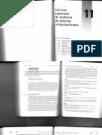 Tecnicas Especiales de Auditoria de Sistemas I