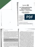 CAPITULO_9_GUILLEN.docx